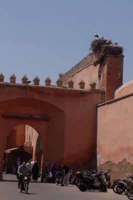 2014, Marrakesch, Medina