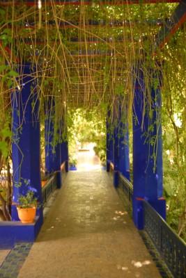2014, Marrakesch, Jardin Majorelle