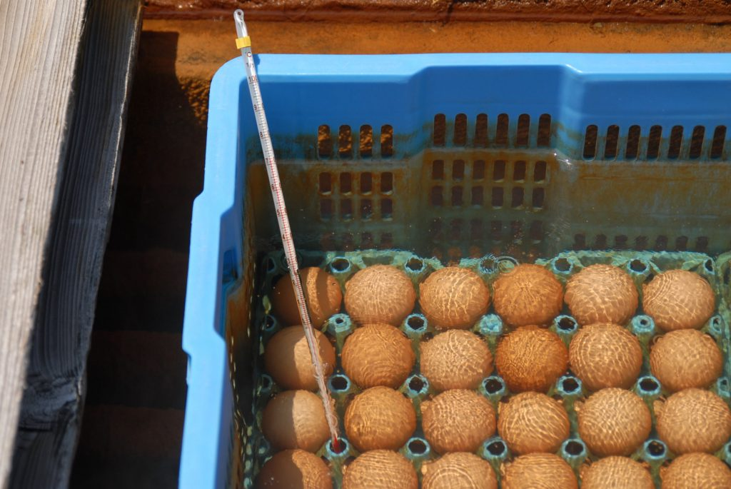 Ist Wierkochen bei 72 Grad Celsius bereits slow food?